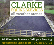 Clarke Equine Services  2019 (Leicestershire Horse)
