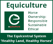 Equiculture 01 (Leicestershire Horse)