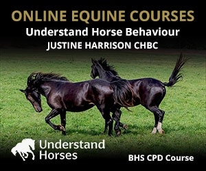 UH - Understand Horse Behaviour (Leicestershire Horse)